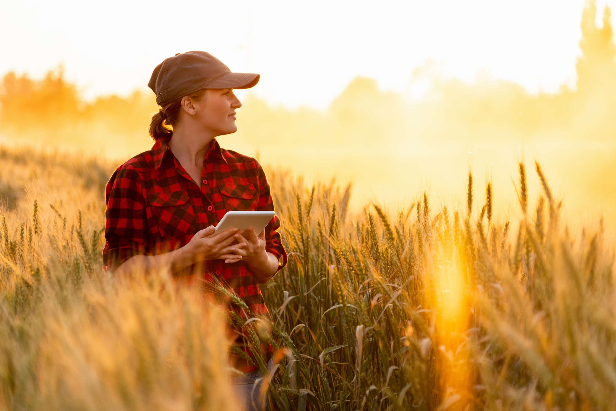 Managed IT Case Study: American Society of Agronomy
