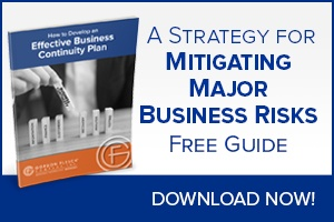 A strategy for mitigating major business risks.
